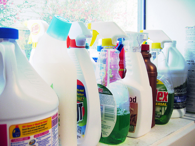 Don't Poison Your Pet - Be Mindful of Cleaning Products